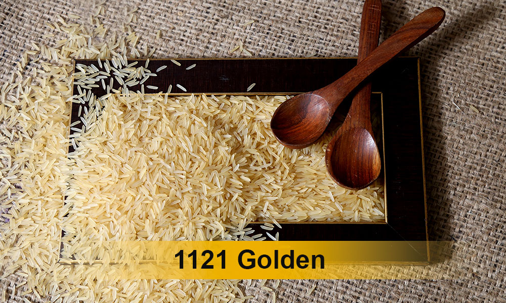 1121-golden