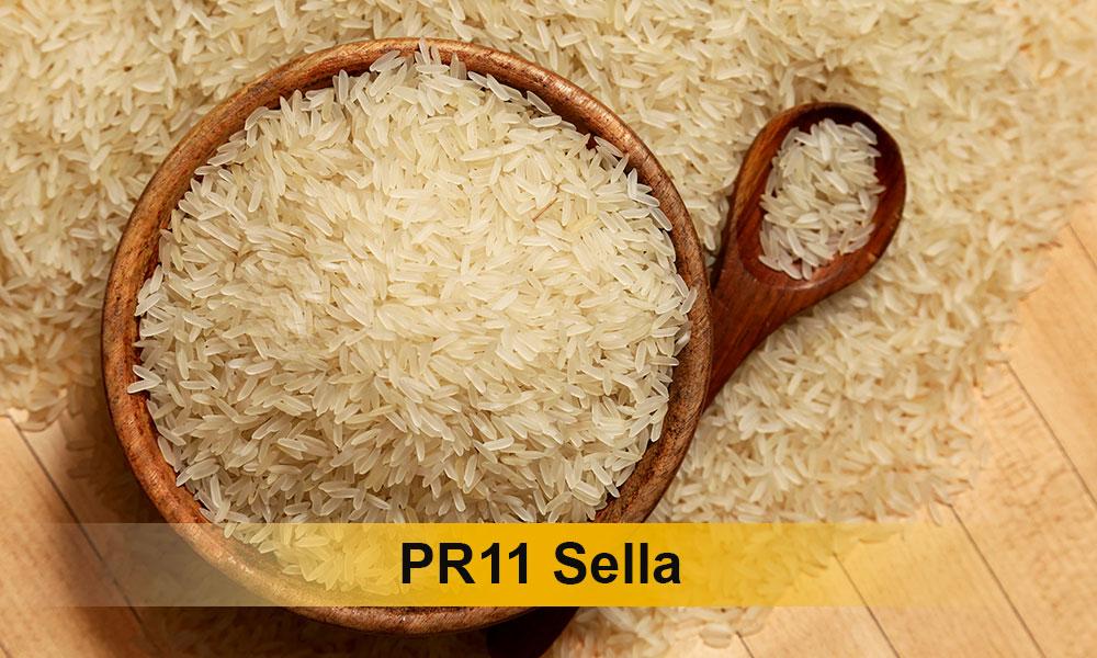 PR11-Sella