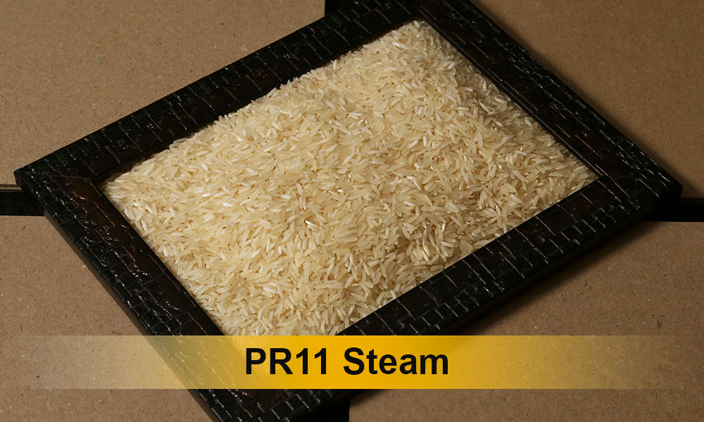 PR11-Steam